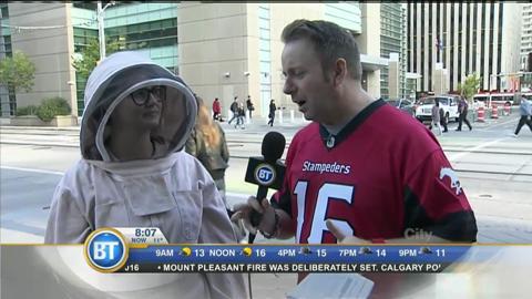 Bee Aware Alberta