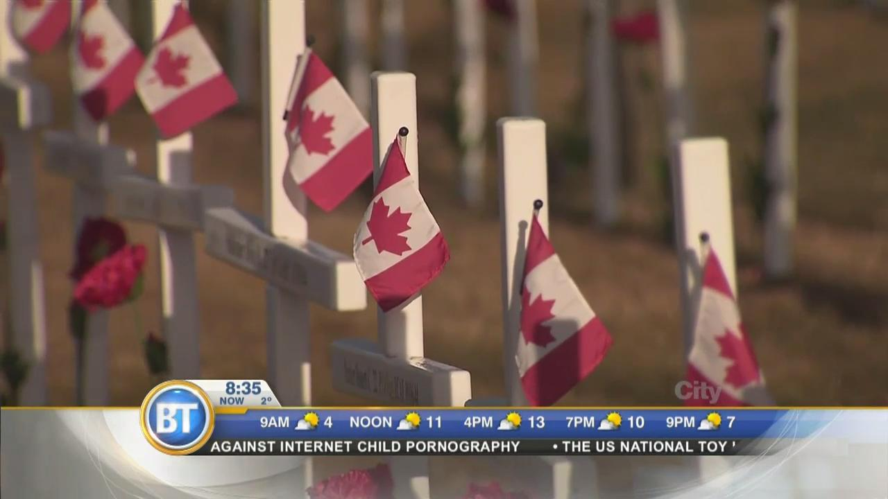 Stuff You Should Do: Remembrance Day